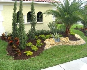 landscaping trees